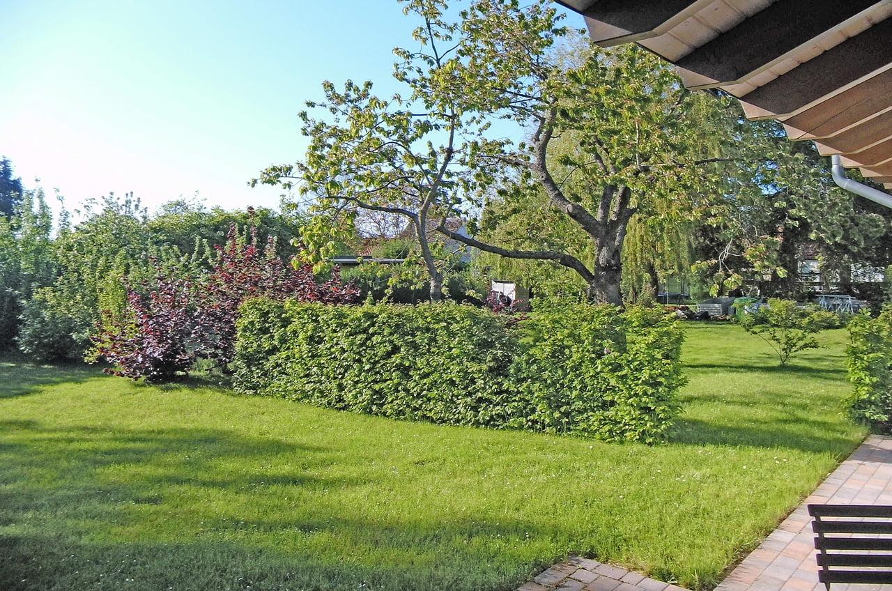 Garten-1